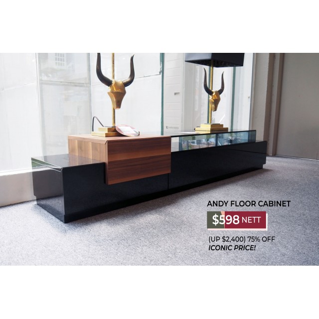 ANDY TV CONSOLE